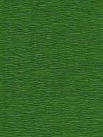 Бумага гофрированная (креп) Cartotecnica Rossi - Темно-зелёная, размер 25x30 см