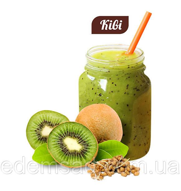 Вітамінно-білковий коктейль КІВІ, 20 р, клітинне харчування
