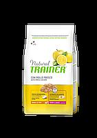 Сухой корм Trainer Natural Adult Mini Con Pollo Fresco, Riso & Aloe Vera для взрослых собак мелких пород 7 кг.