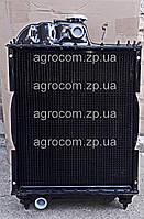 Радиатор водяного охлаждения МТЗ-80, Д-240 Медный.