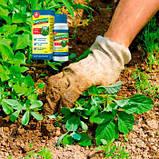 БиоГард защита от сорняков, фото 2