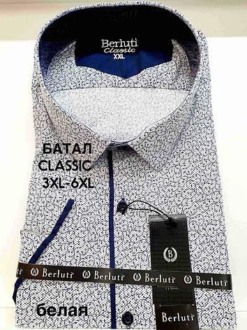 Рубашка  батальная короткий рукав Berluti classik с принтом, фото 2
