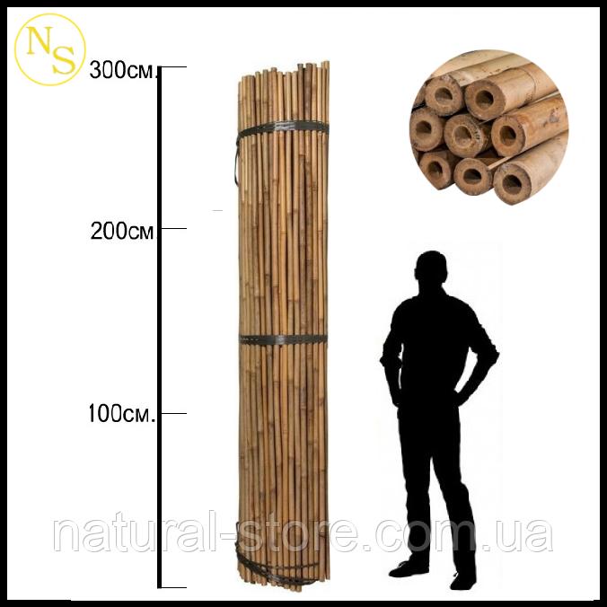 Бамбуковый ствол, опора L 3,05м. д. 18-20 мм.