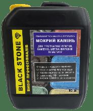 Защитная пропитка Black Stone мокрый камень (10л)  с тонировочным эффектом