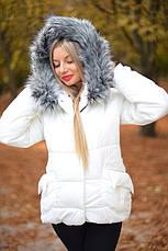 Зимняя куртка на синтепоне, фото 3