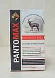 Pantomax - Драже для підвищення потенції (Пантомакс), фото 2