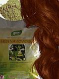 Хна Индийская для волос Royal, Иранская, Yogi Globals,Nupur,Hemani оптом и в розницу, фото 5