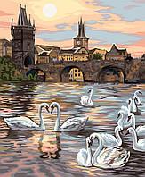 """Акриловая картина по номерам на холсте город и озеро """"Лебеди Праги"""" 40х50, 4 уровень сложности"""