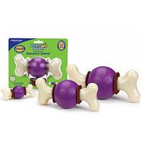 Premier Bouncy Bone суперпрочная игрушка-лакомство для собак, S, для собак до 5 кг