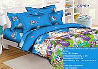 Подростковый полуторный комплект постельного белья Рарибот, ранфорс 100% хлопок, Украина