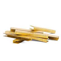 Скоба для степлера PT-1615 20 мм 10,8x1,40x1,60 мм 10000 шт/упак. INTERTOOL PT-8220