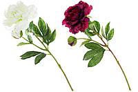 Декоративный цвето Пион, 59 см, 2 вида - белый, лиловый SKL11-249675