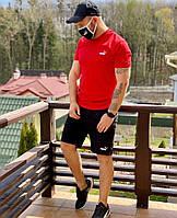 Спортивный мужской костюм шорты + футболка в расцветках 43220