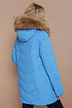 GLEM Куртка 18-182, фото 2