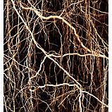 Парфуми METAL SPORT YODEYMA - аналог ALLURE HOMME SPORT (Chanel), 15 мл, фото 5