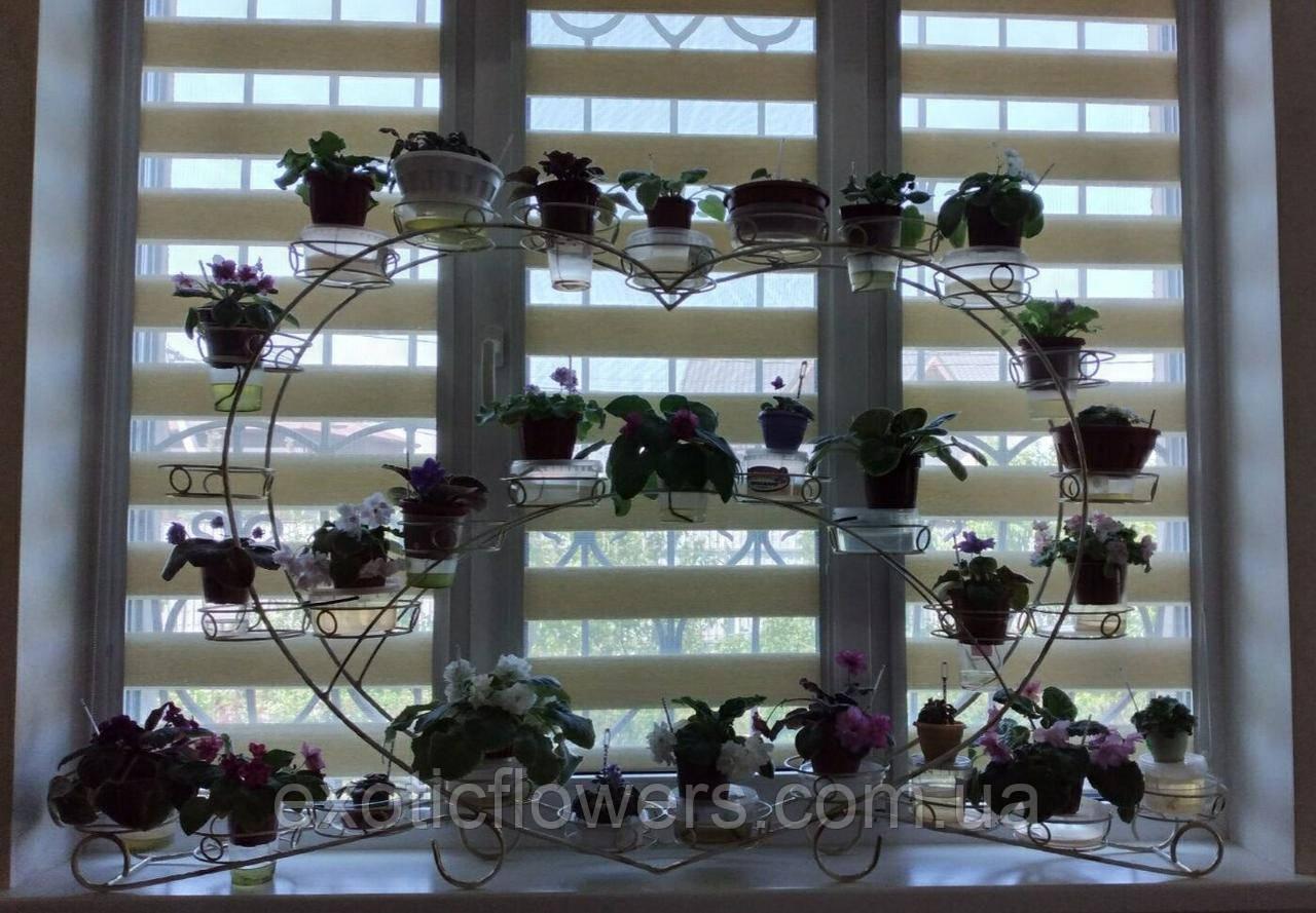 "Подставка для цветов на 30 чаш ""Фиалка-30"""