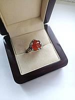 Серебряное кольцо Змейки