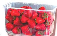 Контейнер пищевой для ягод - 1 кг . Ящик - 1000шт. Полипропиленовый