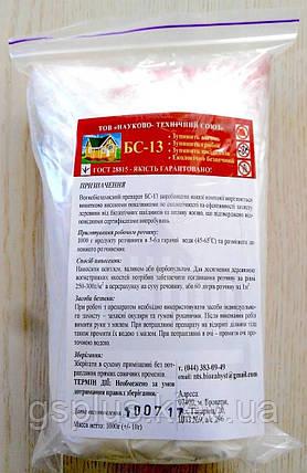 Антисептик огнебиозащита БС 13, фото 2
