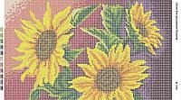 Схема для вышивания бисером ''Подсолнухи'' А3 29x42см