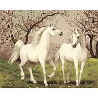 Картина по номерам Животные, птицы Пара единорогов 40x50 см KHO2431