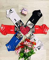 Носки спортивные летние сетка хлопок короткие Adidas Турция размер 36-41 цветной микс