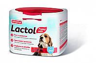 Молочная смесь для щенков  Lactol Puppy Milk 500 г  Беафар / Beaphar