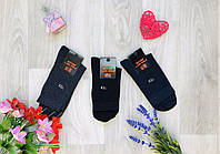 Демісезонні шкарпетки бавовна середні Житомир ТМ LOMANI розмір 27-29 (42-45) мікс