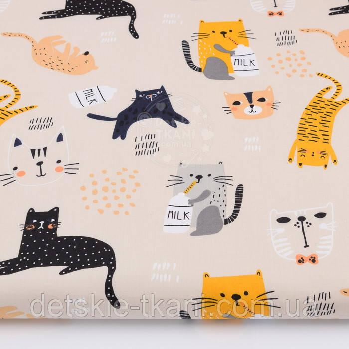 """Ткань бязь """"Коты с молоком жёлтые, серые, чёрные"""" на бежевом фоне, № 2806а"""