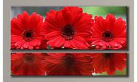 Модульная картина на холсте Красные герберы-2 71,5х120 см (HAD-016)