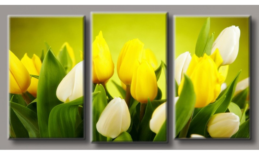 Модульная картина Желтые тюльпаны-5 55х100 см ( HAT-192)
