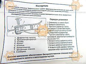 Мухобойка Chery QQ хетчбек после 2003г (пр-во AV-Tuning) ПД 74759, фото 2