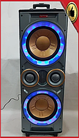 Колонка активная Rainberg RB-555 X-BASS (300/600W/USB/FM/Bluetooth)