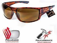 Поляризационные очки BluWater Babe Winkelman коричневые, фото 1