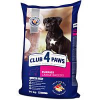 Сухой корм Клуб 4 Лапы Puppies Large Breeds Premium для щенков крупных пород, с курицей, 14 кг