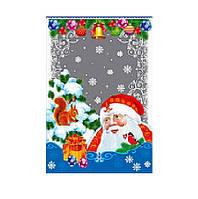 Пакет Подарочный Новогодний 20х35 (100 шт), (для упаковки подарков)
