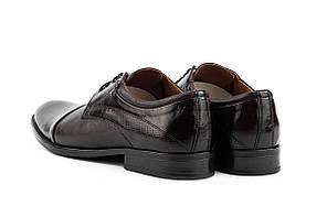 Мужские туфли кожаные весна/осень коричневые Slat 19401 на шнурках, фото 2