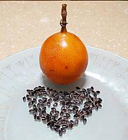 Гранадилла  сладкая, фото 1