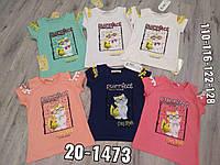 """Дитяча футболка для дівчинки """"Кішка"""" 5-8 років, колір уточнюйте при замовленні"""