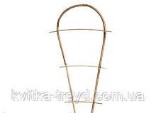 Драбинка бамбукова на дузі