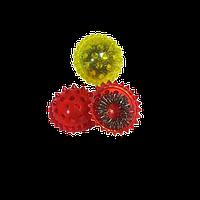 Лечебный комплект су-джок - «Ёжик + кольцо»