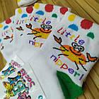 Носки детские демисезонные Класик Украина 10 размер крабик НДД-080651, фото 4
