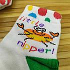 Носки детские демисезонные Класик Украина 10 размер крабик НДД-080651, фото 3