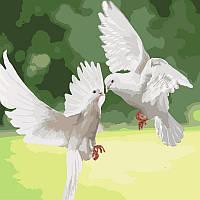 """Картина по номерам,""""Белоснежные голуби"""" 40*40см KHO4149"""