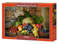 """Пазлы Castorland """"Натюрморт с фруктами"""", 1500 элементов,68*47, C-151868"""