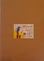 Бумага для акварели, в папке, А1, 200г/м2, 8 листов, 21,5х30см, 121190