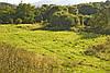 Ділянка з недобудовою в лісі (Перечинскьий район), фото 6