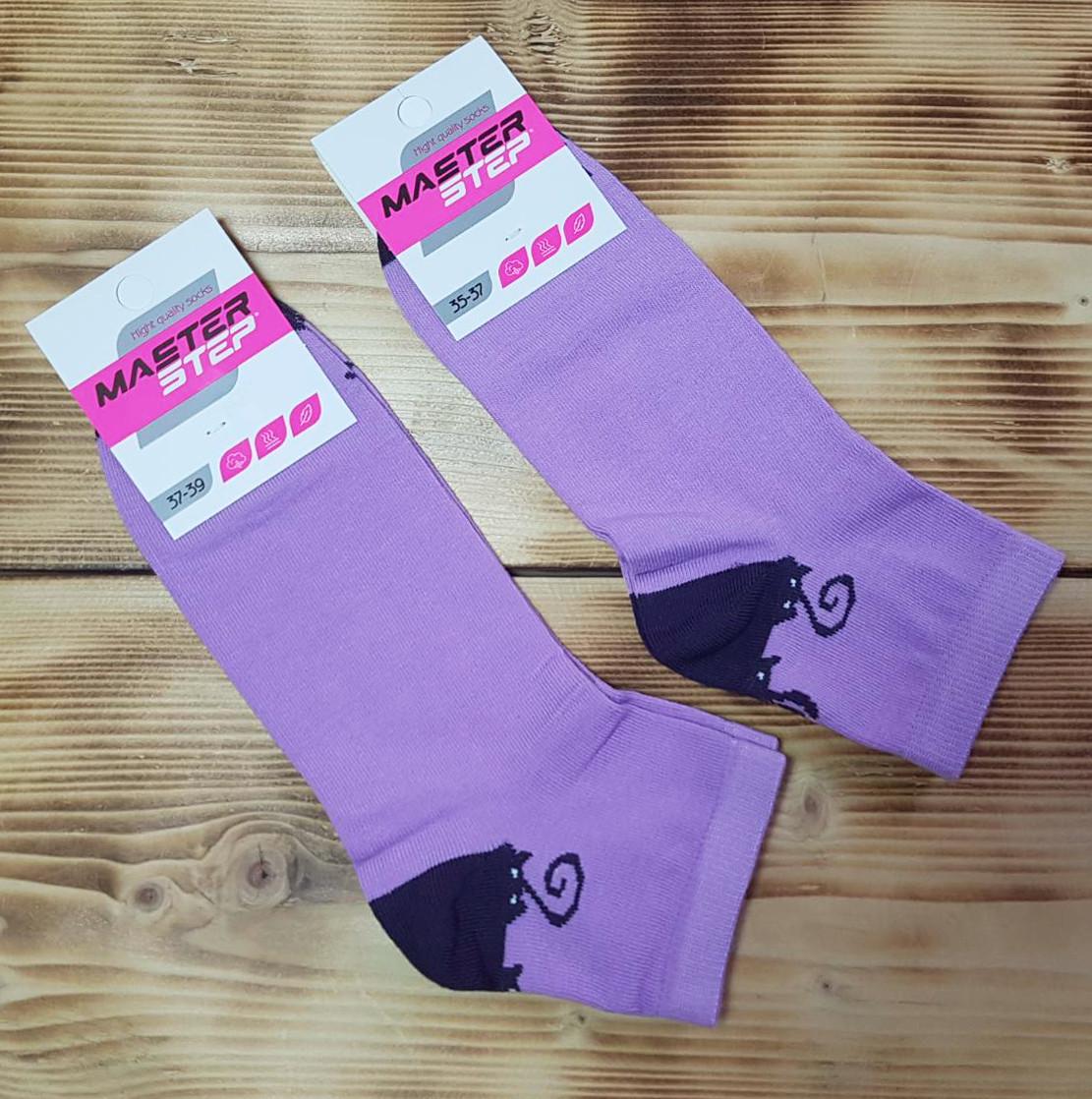 Шкарпетки жіночі «Котики», розмір 25 / 37-39р.