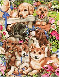 Картина по номерам - Озорные щенки