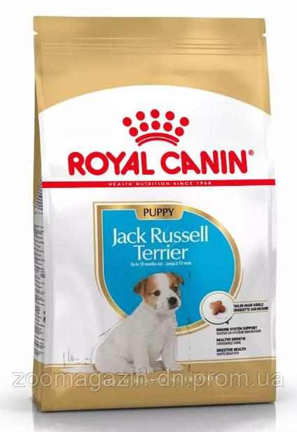 Royal Canin Jack Russel Junior для щенков породы джек-рассел-терьер в возрасте до 10 месяцев 0,5 кг